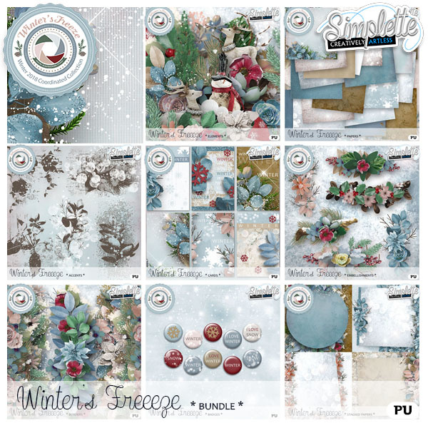 Winter's freeze - exclusive collection @The Studio